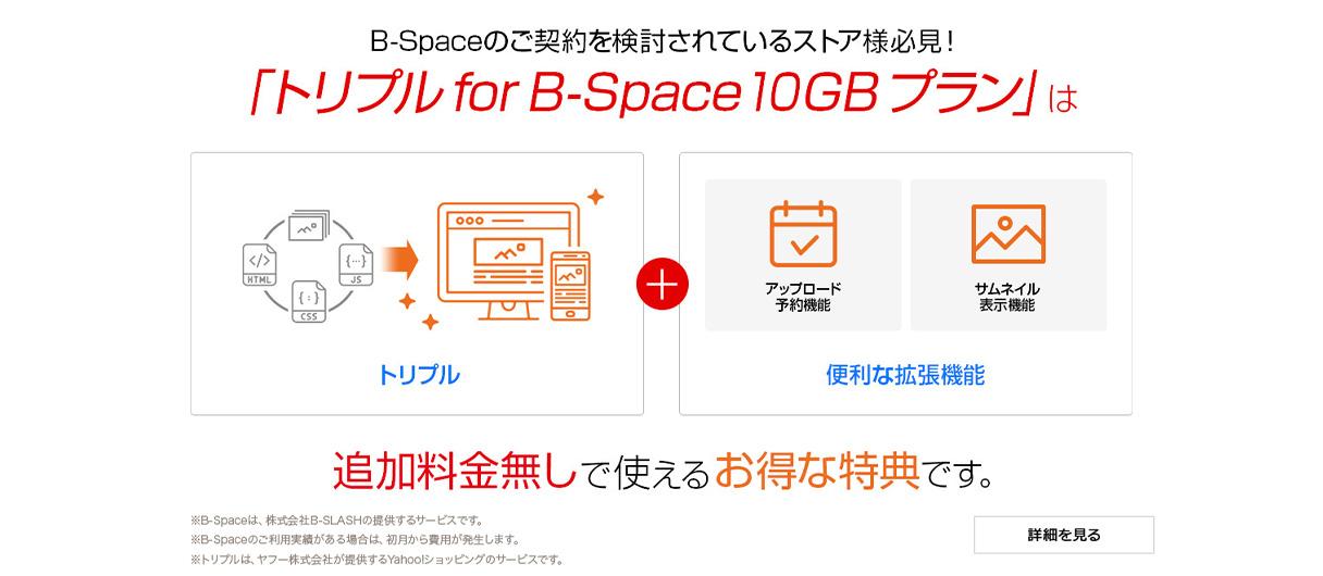 トリプル for B-Space 10GBプラン